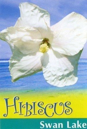Hibiscus_0020_Swan_0020_lake