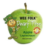 Leprechaun_0020_Apple