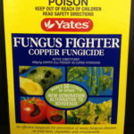 yates_0020_fungus_0020_fighter
