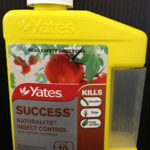 yates_0020_success
