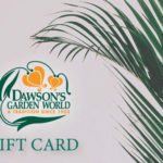 Dawsons.Gift.Cards (1)
