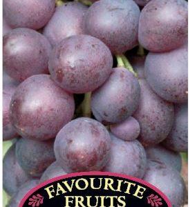 Grape Flame Seedless