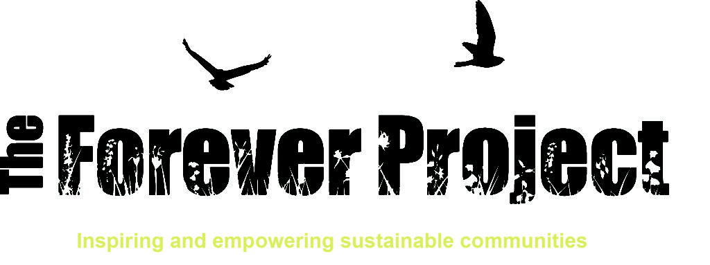ForeverProject_Logo_OCT2012_FINAL_with_strapline
